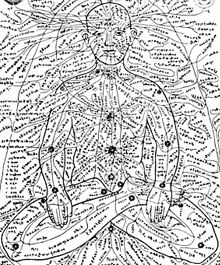 An ancient drawing showing Marma reflex points - Doctor Mosaraf Ali